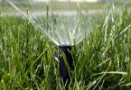 irrigation_3
